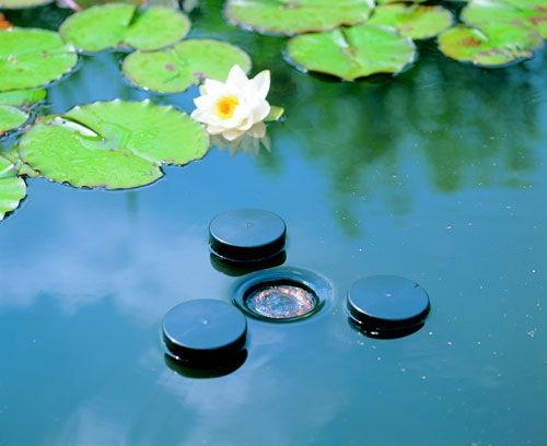 skimmer dowody, zbiera liście ibrud zpowierzchni stawu. filtruje wodę